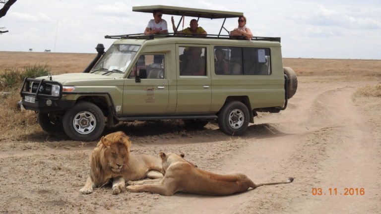 Why Should Your Look for Tour Packages from Top Tour Companies in Tanzania
