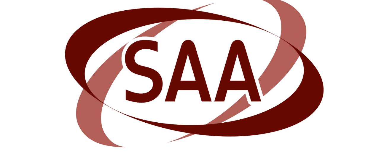 EMINENT SAA PRACTICE WORKBOOK PROVIDERS IN THE USA