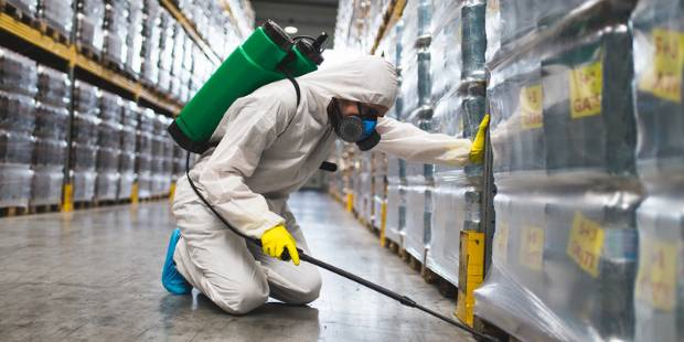 Professional Pest Control Protection During the COVID-19 Crisis 2020
